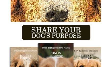 A Dog's Purpose – Celebrate National Mutt Day