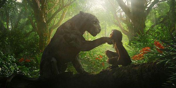 Mowgli-1